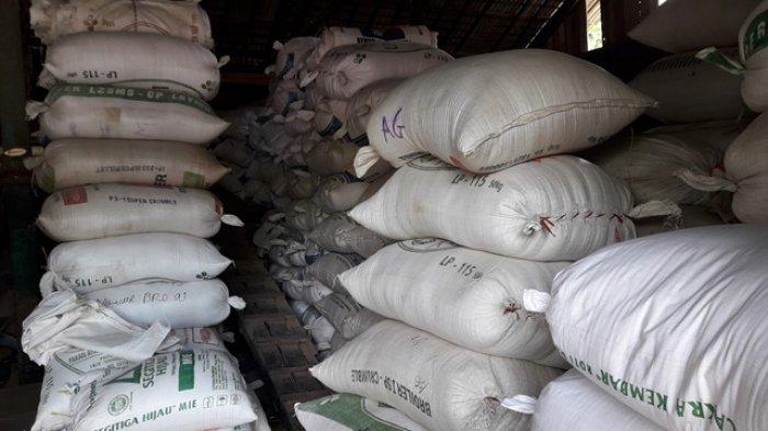 Kabupaten Tapin Panen Raya, Harga Beras Turun, Ini yang Dikeluhkan Petani