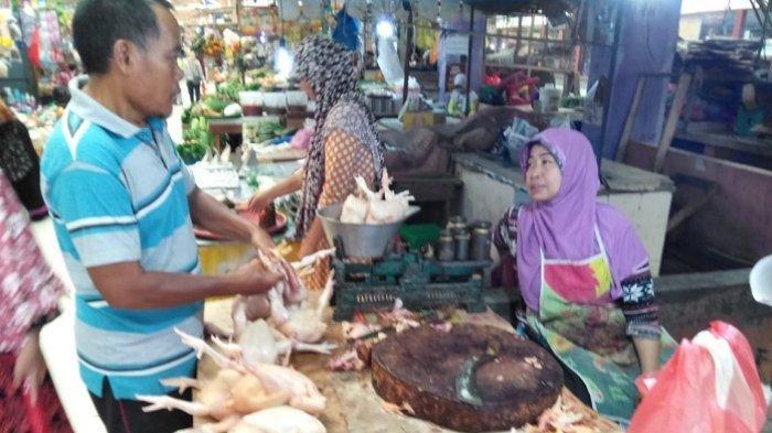 Antisipasi Inflasi Jelang Idulfitri, Pemko Palangkaraya Siapkan Kandang Penyangga Ayam Potong