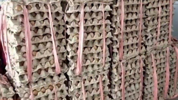 Ikan Telang di Banjarbaru Naik Capai Rp 95 Ribu Per Kg, Telur Ayam Turun Rp 19 Ribu Per Kg