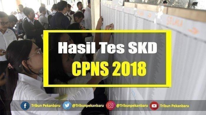 Pengumuman Hasil Tes SKD CPNS 2018 Diumumkan via sscn.bkn.go.id, Pemkab HST Sebar di Grup WA