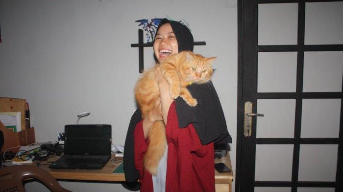 Begini Sifat Sifat Kucing Berdasarkan Warna Bulunya Benarkah Kucing Oranye Istimewa Banjarmasin Post