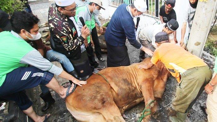 Idul Adha 2021, Warga NU Kabupaten Banjar Bagikan Daging Kurban