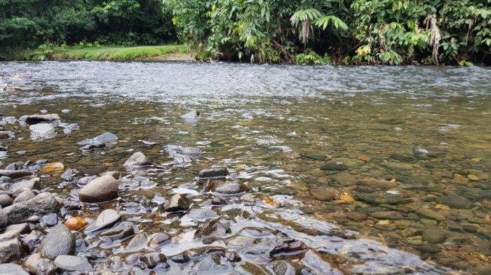 Wisata Kalsel - Jelajah Sungai Alam Riamadungan Tala Dikemas Terpadu dengan Penjelajahan Gua