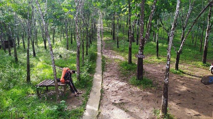 Wisata Alam Puncak Arta di Aranio Kabupaten Banjar, Rasakan Sensasi Mendaki 200 Meter