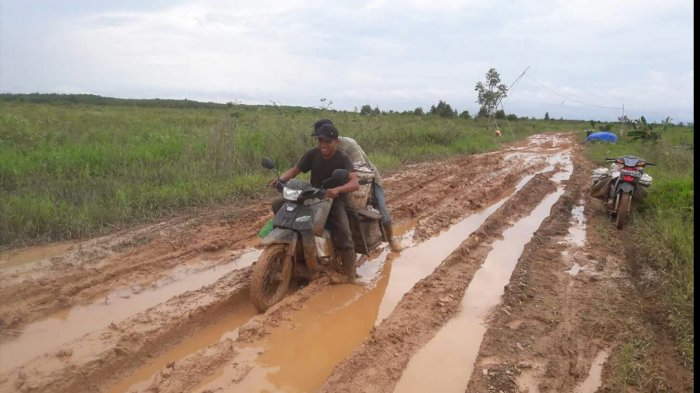 Yth Bapak Bupati HSS, Jalan Perbatasan HSS-Tapin Rusak Berat, Warga Sering Jatuh, Tolong Diperbaiki