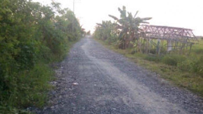 Kepada Kadis PUPR Kabupaten Batola: Jalan Penghubung Dilanjutkan Perbaikannya