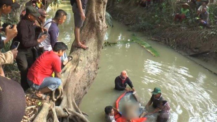 Disuguhi Kopi Campur Racun 2 Agen Sapi Tewas, Calon Pembeli Dibuang Tubuh Korban ke Sungai