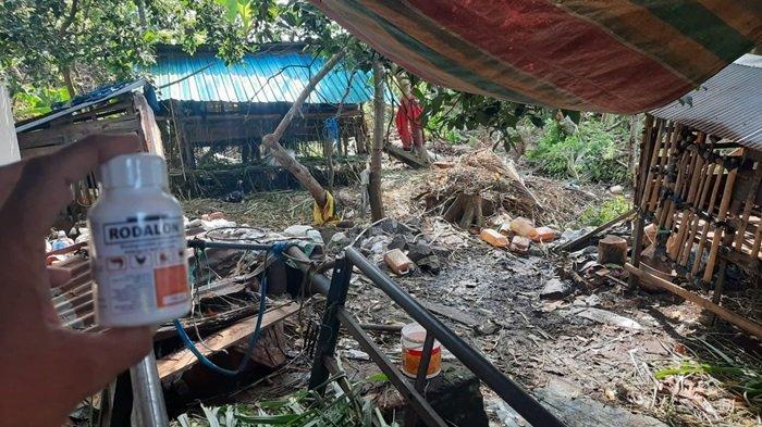 Terdampak Banjir, Peternak Banjarbaru Dibantu 3.000 Ekor Itik