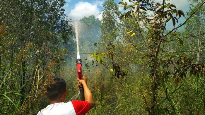 Lahan di Kota Banjarbaru Kembali Terbakar, BPBD Sebut dari Bakaran Sampah