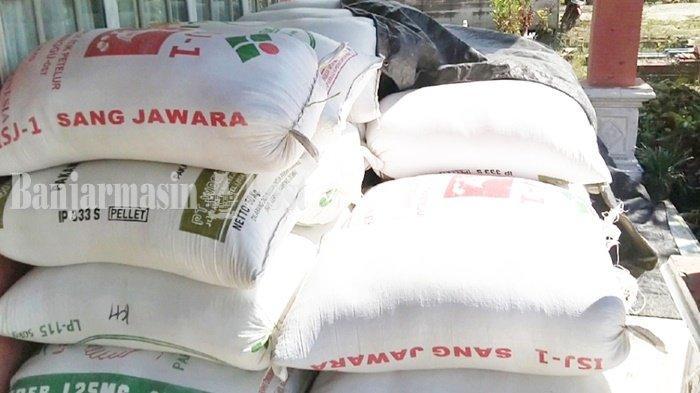 Harga Gabah di Bitahan Kabupaten Tapin Rp 4.700 Per Kg, Petani Pilih Jual ke Tengkulak