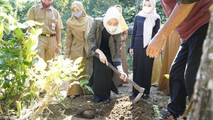 Tanam Bibit Jambu di Kebun PKK, Cheri Imbau Warga HST Hijaukan Lingkungan Tempat Tinggal