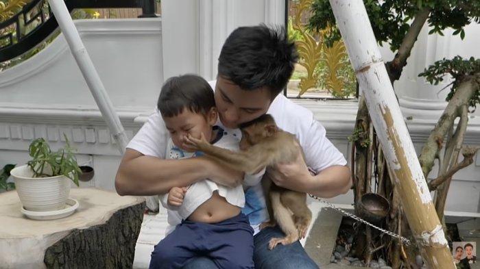 Kondisi Wajah Kiano Baim Wong Imbas Cengkraman Monyet, Paula Khawatir Trauma