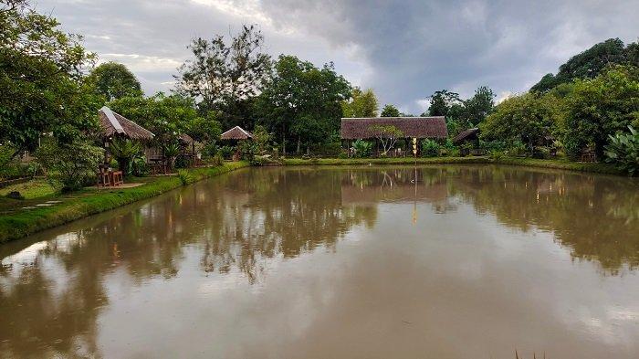 Wisata Kalsel Pemancingan Putri Sangkaya, Bayar Rp 50 Ribu Pemancing Ini Bawa Pulang 4 Kg Ikan Emas