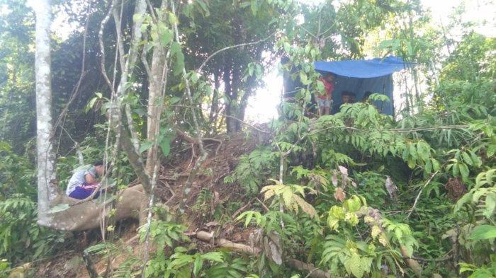 9 Desa di Tanahbumbu Dibangun Menara BTS Telekomunikasi, Target Mulai Juli 2021 Tertunda Covid-19