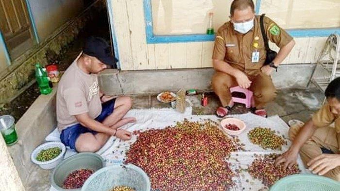 Kuliner Kalsel, Kopi yang Dijual Rungkop Inspirasi Diambil Langsung dari Petani Tabalong