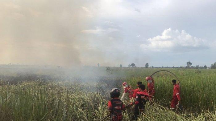 Karhutla Kembali Mengintai, Api Jamah Lahan Bondong di Gunungraja Kabupaten Tanahlaut