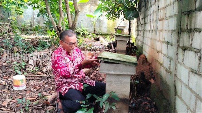 Arif Sugianto (55) mengintip rumah lebah madunya di Jalan SD, Griya Ulin Permai RT 4 RW 3, Kelurahan Landasan Ulin Timur, Kecamatan Landasan Ulin, Kota Banjarbaru, Provinsi Kalimantan Selatan, Senin (22/2/2021).