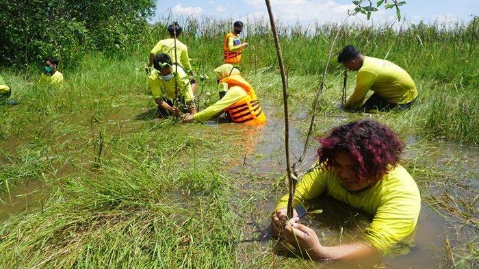Mahasiswa dan dosen Prodi Biologi FMIPA ULM, bersama mitra, melakukan penanaman mangrove rambai di Pusat Riset Bekantan di Pulau Curiak, Kecamatan Anjir Muara, Kabupaten Barito Kuala (Batola), Provinsi Kalimantan Selatan, Minggu  (25/7/2021).