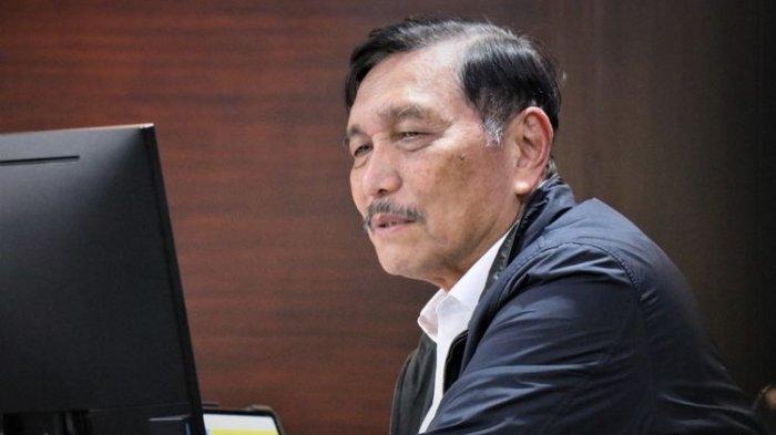 Jokowi Pecat Pejabat Pertamina, Luhut: Melacurkan Profesionalisme Demi (Uang) Saja