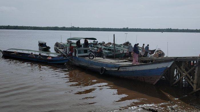 Teror Buaya Mengancam, Aktivitas Kelotok Penyeberangan Samuda-Pulau Hanaut Kotim Tetap Ramai