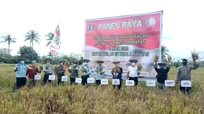 Program Ketahanan Pangan Resolusi Pemasyarakatan, Rutan Kualakapuas Tanam Padi IR 64