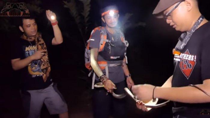 Tinggalkan King Kobra Garaga, Peristiwa Panji Petualang Ditemani Nenty Temukan Ular Koros