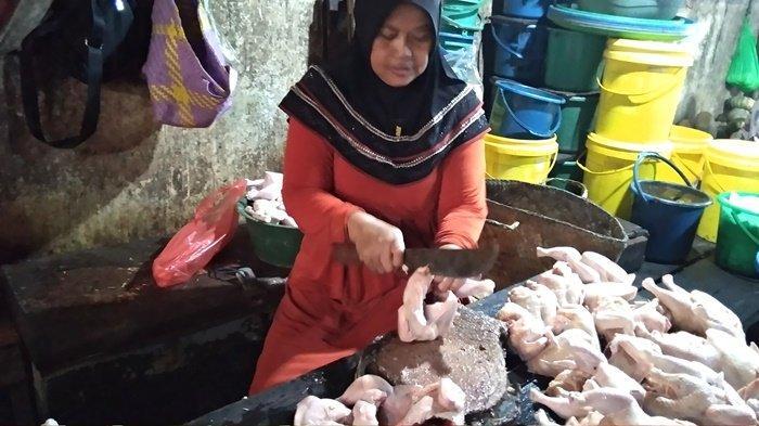 Anggota Pinsar Kalsel Berharap Harga LB Ayam Ras di Tingkat Peternak Ikut Terdongkrak Naik