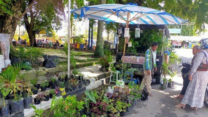 Taman Puteri Junjung Buih Amuntai Ramai Penjual Bunga, Banyak Pilihan Tanaman Hias
