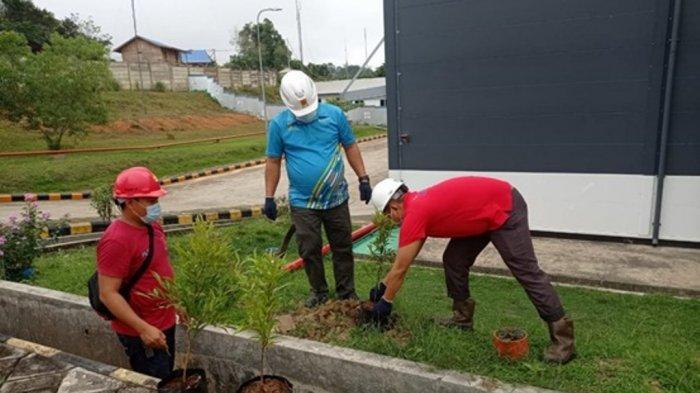 PT PLN (Persero) UPDK Palangkaraya Lakukan Penghijauan Peringati Hari Lingkungan Hidup Sedunia