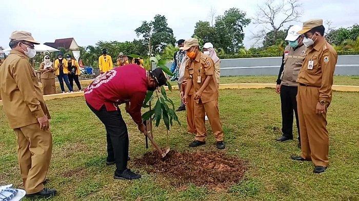 Tanam Kasturi di Kebun Raya Banua, Pj Gubernur Sebut Pemanasan Jelang Penanaman 1 Juta Pohon
