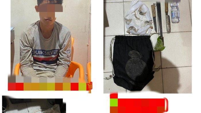 Pencurian di Kalsel, Pembobol Sarang Walet dan Pelaku Pecah Kaca Mobil di Tabalong Dibekuk