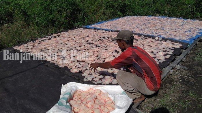Wisata Kalsel, Menengok Kampung Kerupuk Singkong Desa Sahurai Batola