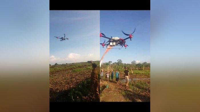 Dinas Pertanian HSU Akan Perluas Penggunaan Drone untuk Berantas Gulma
