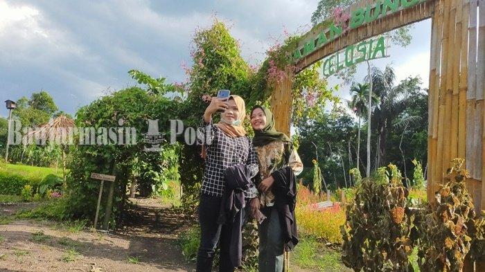 Taman Mekarsari Penuh Bunga Celosia di Kabupaten Balangan Pernah Didatangi Ribuan Orang