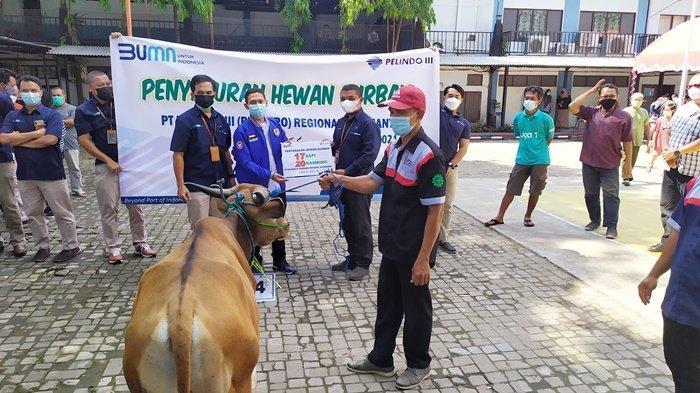 PT Pelindo III Regional Kalimantan Salurkan 37 Hewan Kurban Idul Adha 1442 H