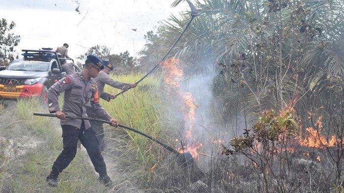 Karhutla Kalteng, Personel Brimob Padamkan Api di Jalan Arah Sampit-Pangkalanbun