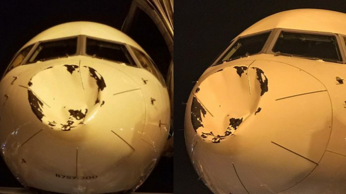 Heboh! Pesawat yang Dinaiki Atlet NBA Ini Penyok Setelah Ditabrak Burung