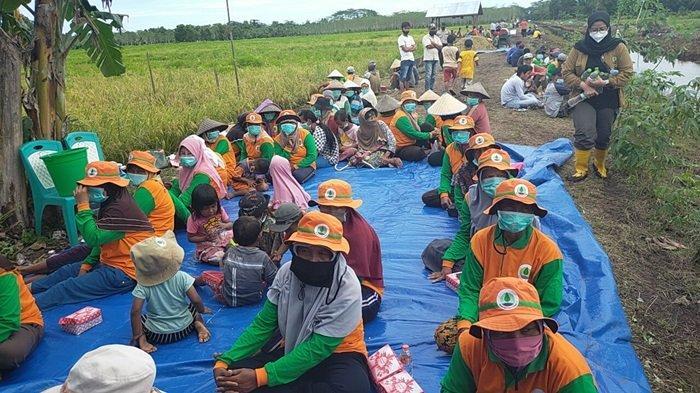 Food Estate Kalteng, Menteri Pertanian Tertarik Kembangkan Peternakan Sapi di Kabupaten Sukamara