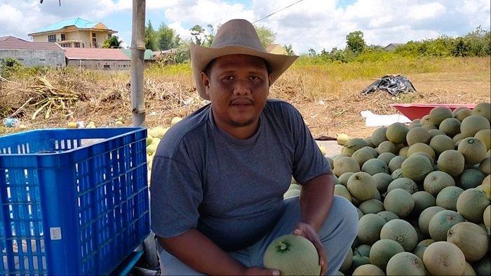 Petani Melon di Banjarbaru Ini Pilih Panen Ramadhan, Begini Alasannya
