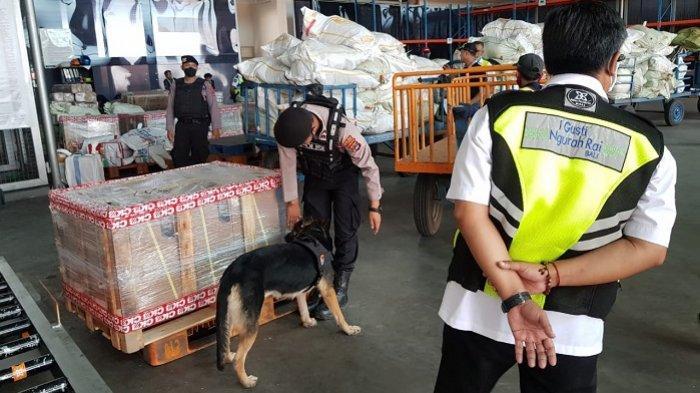 Sterilisasi Bandara Syamsudin Noor Hingga Klenteng,  Anjing Pelacak Unit K9 Polda Kalsel Diterjunkan