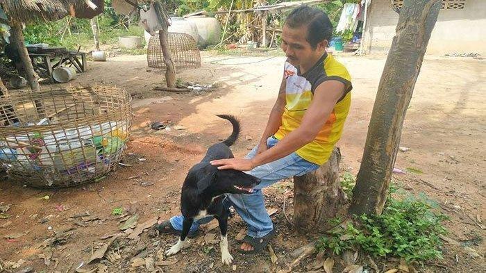 Anjing Lumpuh Selamatkan Bayi yang Dikubur Hidup-hidup di Kebun Singkong, Sosok Ibunya Terungkap