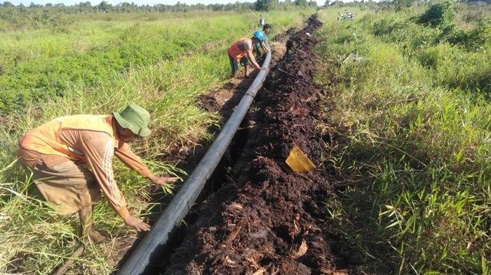 Pipanisasi di Kawasan Hutan Lindung Guntung Damar Banjarbaru Siap Digunakan Atasi Karhutla