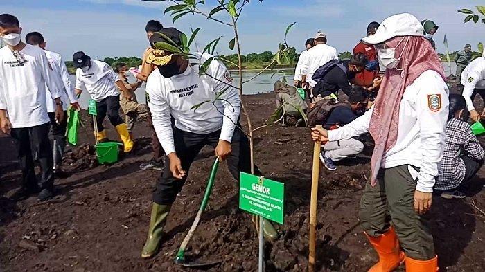 Penanaman Sejuta Pohon di Kalsel, PJ Gubernur Minta Permudah Dapatkan Bibit