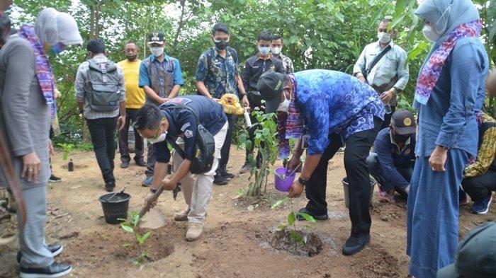 Penjabat Gubernur Kalimantan Selatan, Safrizal ZA, disaksikan Bupati Hj Noormiliyani, melakukan penanaman pohon kopi liberika di Kawasan Wisata Pulau Kanoko, Kecamatan Anjir Muara, Kabupaten Barito Kuala (Batola), Jumat (2/7/2021).