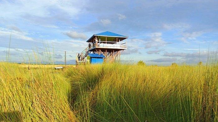 Buka Jalur Baru untuk Wisata Susur Rawa di Pulantani Kabupaten HSU