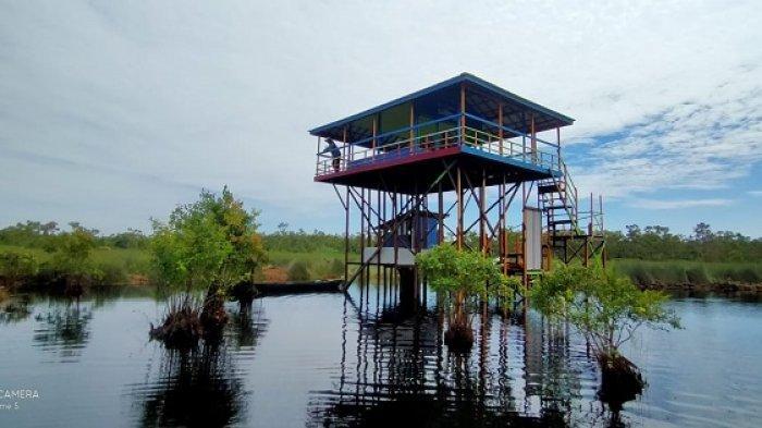 Pondok Wisata Kalsel Susur Rawa Gambut di Desa Pulantani.