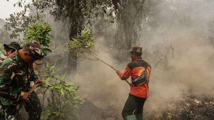 2 Kali Awal Pemerintahan, Jokowi Dihadang Kebakaran Hulan dan Lahan di Indonesia, Karhutla Jadi PR
