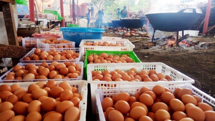 Mana Lebih Baik Telur Ayam Kampung atau Ayam Negeri?, Ternyata Begini Faktanya