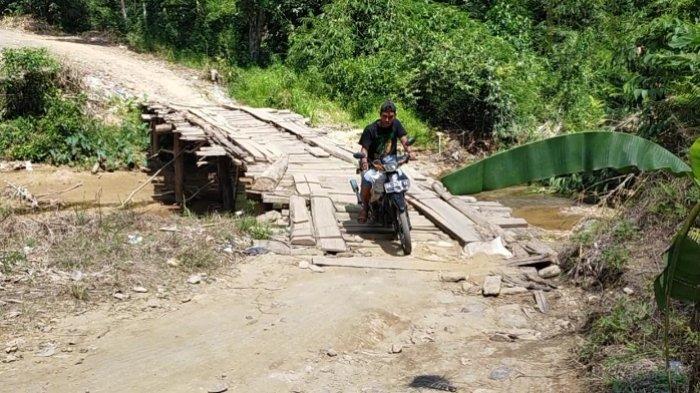 Walhi Desak Gubernur  Kalsel Terpilih Sediakan Anggaran untuk Penyelamatan Hutan Meratus