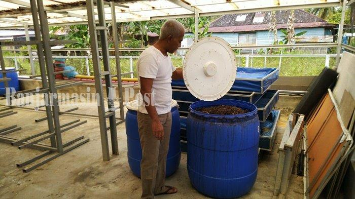 Wisata Kalsel, Tempat Budi Daya Ulat Maggot di Tabalong Manfaatkan Sampah Organik